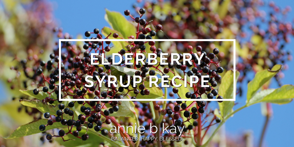 Elderberry Syrup Recipe by Annie B Kay - anniebkay.com
