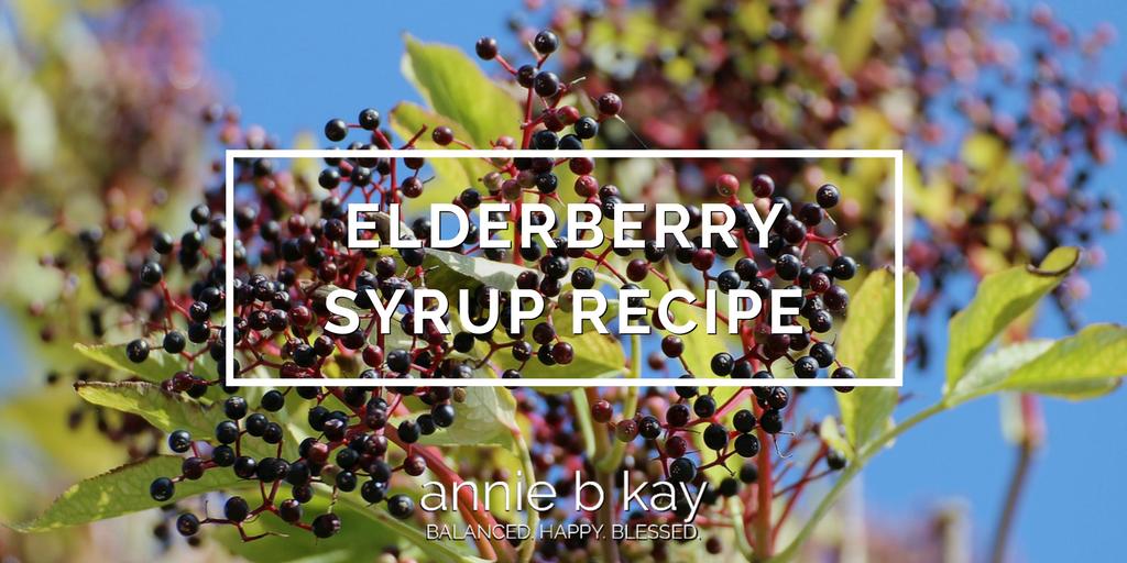 Elderberry Syrup Recipe by Annie B Kay - anniebkay.com