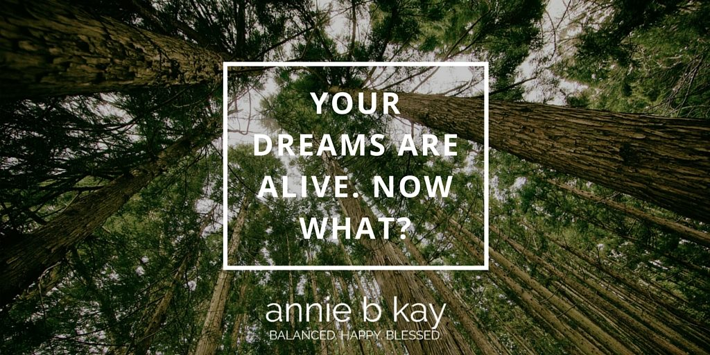 Your Dreams are Alive. Now What? by Annie B Kay