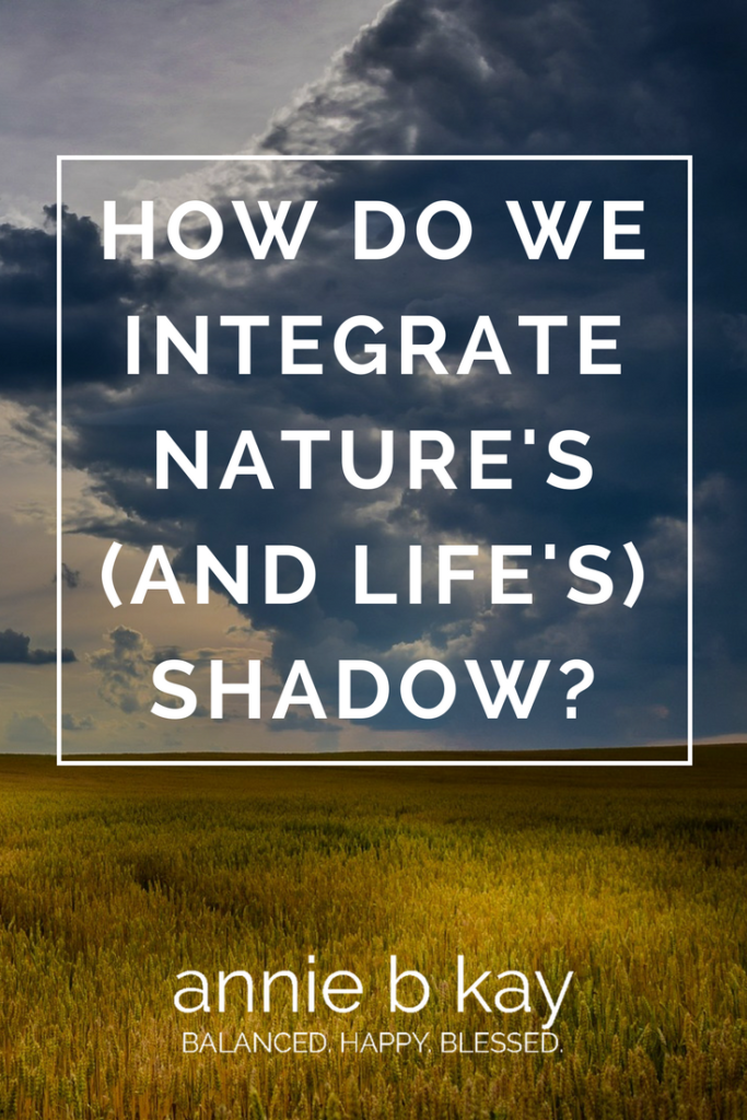 How Do We Integrate Nature's (and Life's) Shadow- by Annie B Kay - anniebkay.com