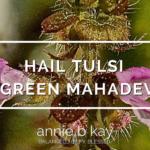 Hail Tulsi - Green Mahadevi by Annie B Kay - anniebkay.com