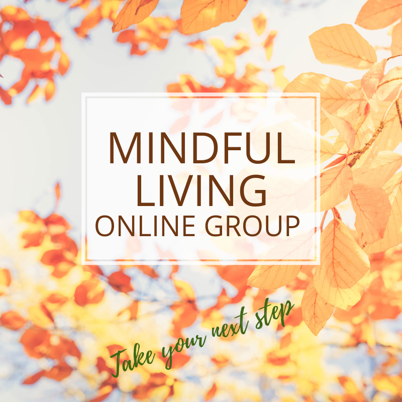 mindful living online group annie kay